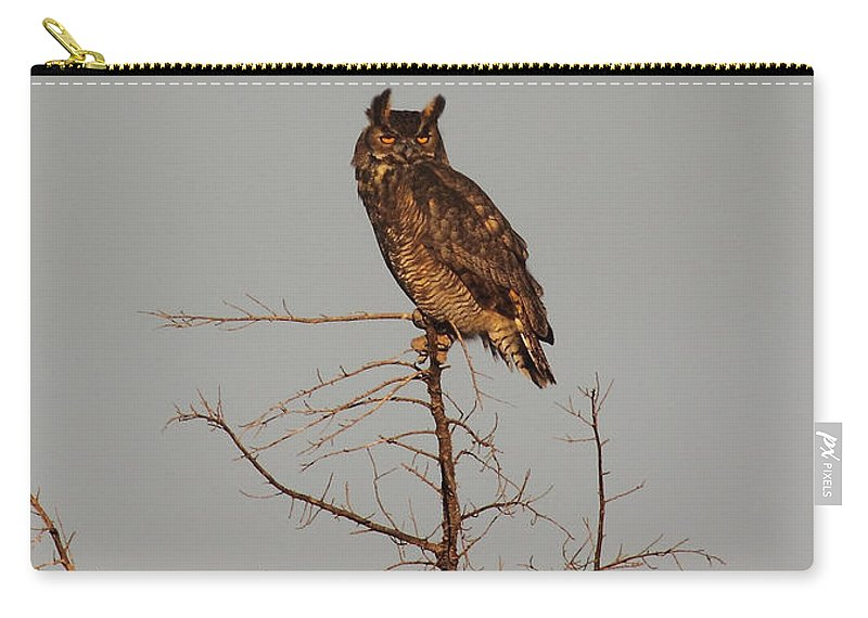 Nature Carry-all Pouch featuring the photograph Great Horned Owl by Robert Frederick