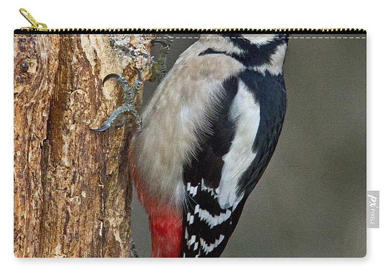 Great Carry-all Pouch featuring the photograph Great Spotted Woodpecker by David Pringle