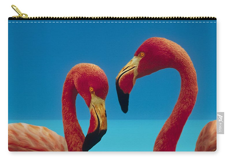 00172310 Carry-all Pouch featuring the photograph Greater Flamingo Courting Pair by Tim Fitzharris