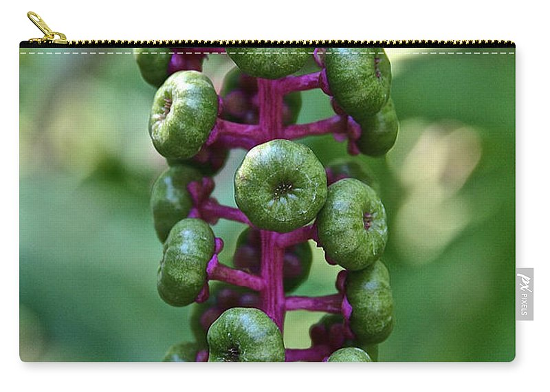 Outdoors Carry-all Pouch featuring the photograph Green Buttons by Susan Herber