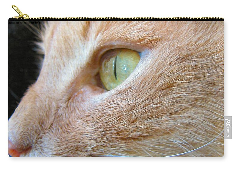 Cat Carry-all Pouch featuring the photograph Green Eyes by Art Dingo