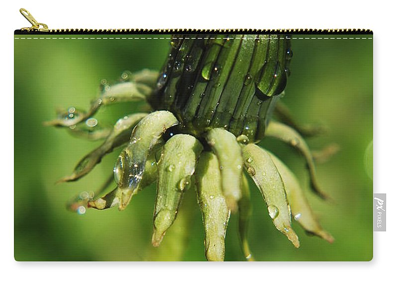 Yhun Suarez Carry-all Pouch featuring the photograph Green Flower Dew Drops by Yhun Suarez