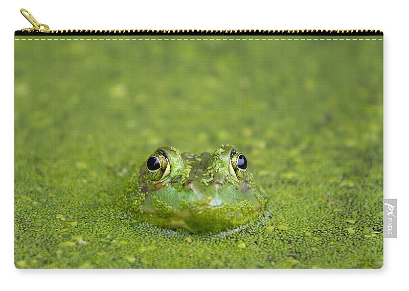 Frog Carry-all Pouch featuring the photograph Green Frog Eyes by Stephanie McDowell