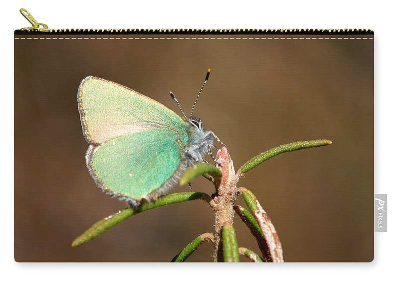 Isosuo Carry-all Pouch featuring the photograph Green Hairstreak by Jouko Lehto