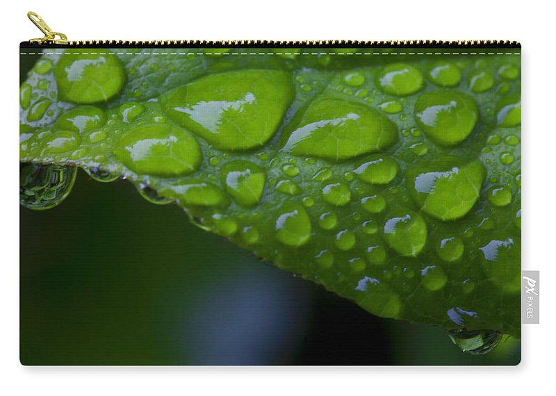 Nature Carry-all Pouch featuring the photograph Green by Karen Ulvestad