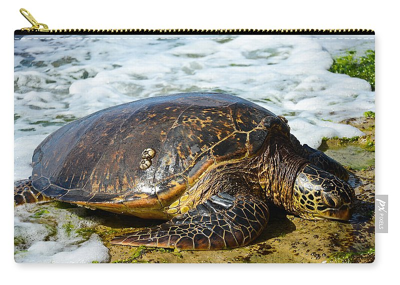 Sea Turtle Carry-all Pouch featuring the photograph Green Sea Turtle Of Hawaii by Shirley Tinkham
