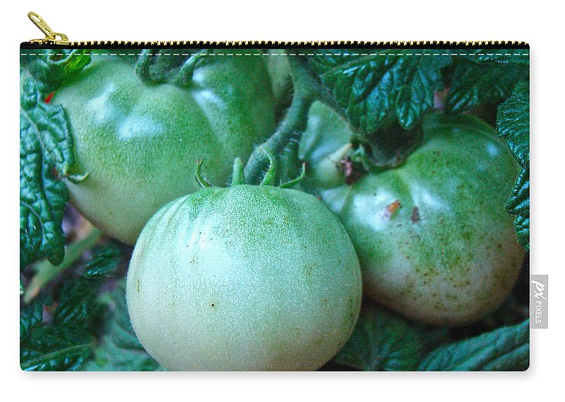 Green Carry-all Pouch featuring the photograph Green Tomatoes On The Vine by Mother Nature