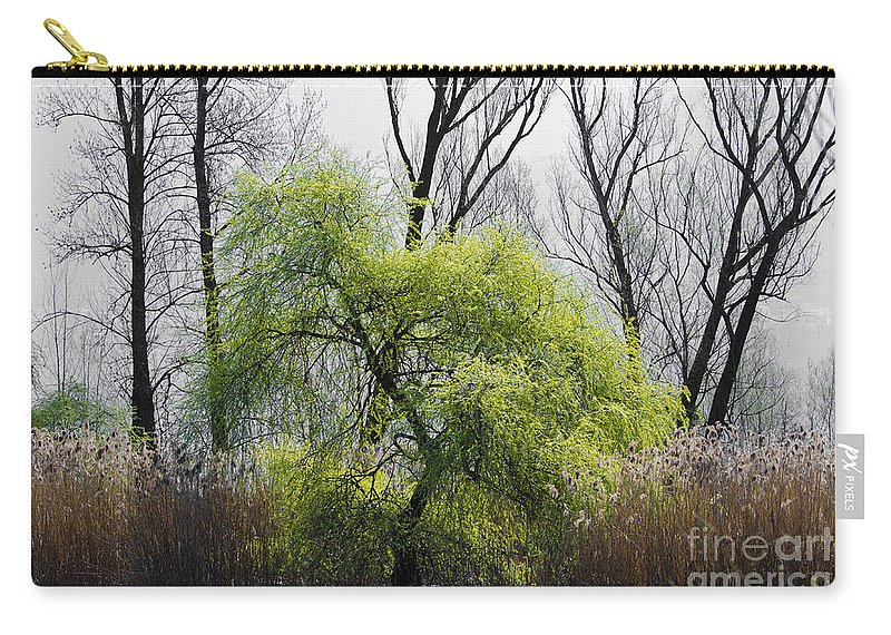Trees Carry-all Pouch featuring the photograph Green Tree And Pampas Grass by Mats Silvan