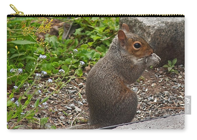 Squirrel Carry-all Pouch featuring the photograph Grey Squirrel by Jeff Galbraith
