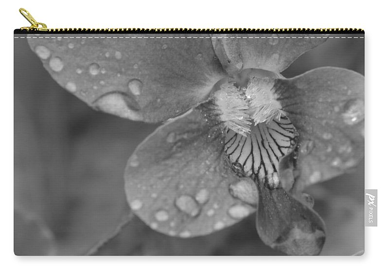 J.d. Grimes Carry-all Pouch featuring the photograph Grey Violet by JD Grimes