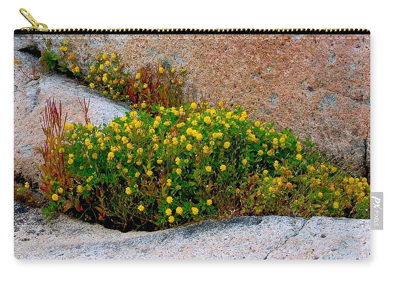 Rock Carry-all Pouch featuring the photograph Growing In The Cracks by Brent L Ander