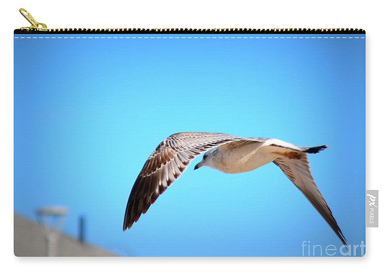 Sea Carry-all Pouch featuring the photograph Gull On The Wing by Kevin Fortier
