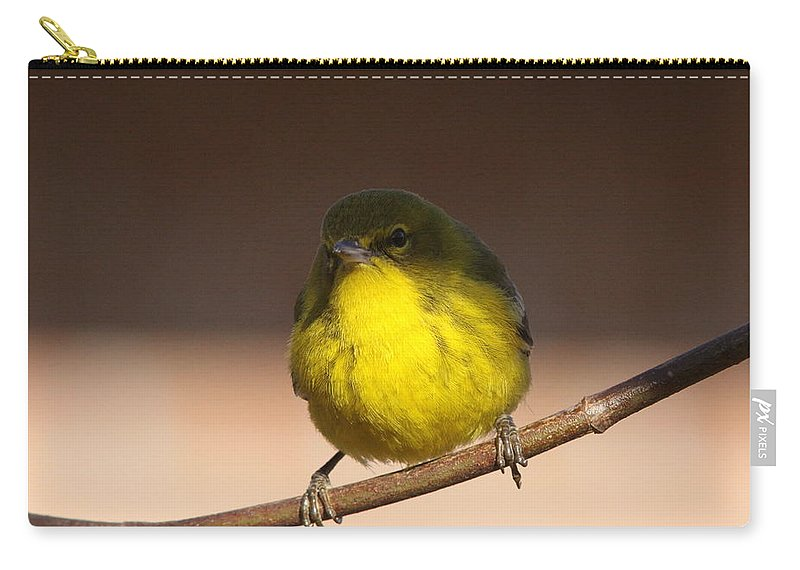 Pine Warbler Carry-all Pouch featuring the photograph Half N Half by Travis Truelove