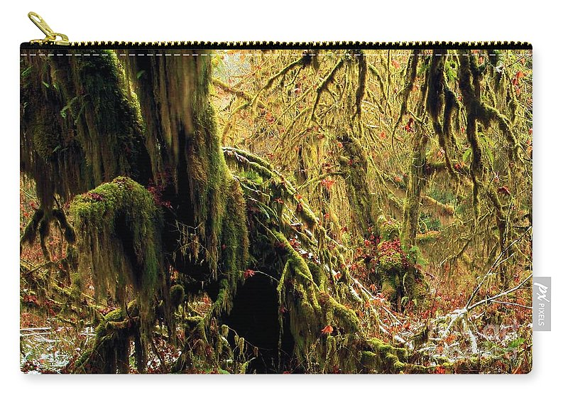 Hoh Rainforest Carry-all Pouch featuring the photograph Hall Of Mosses by Adam Jewell