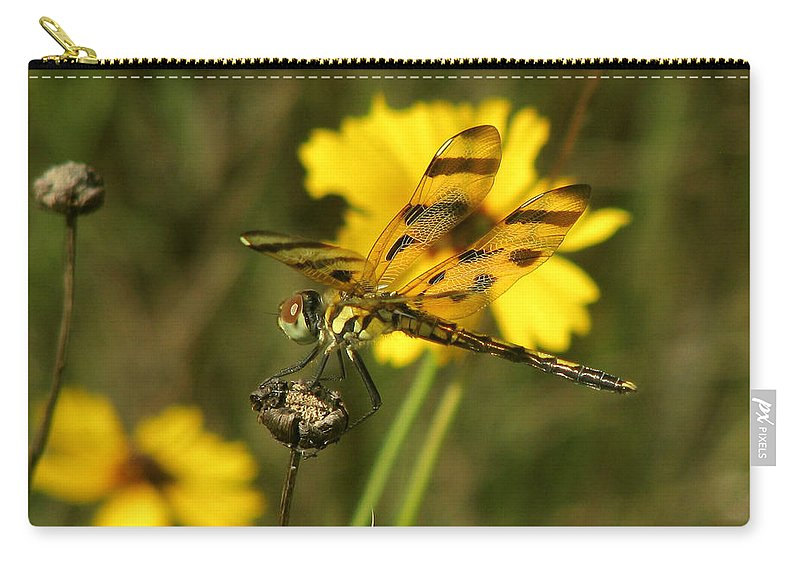 Nature Carry-all Pouch featuring the photograph Halloween Pennant by Peg Urban