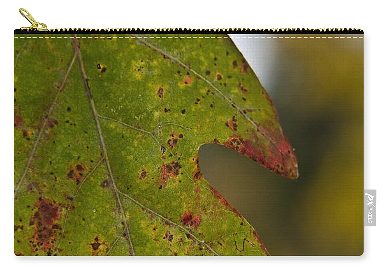 Landscape Carry-all Pouch featuring the photograph Hangin' Around by Kacy Taylor