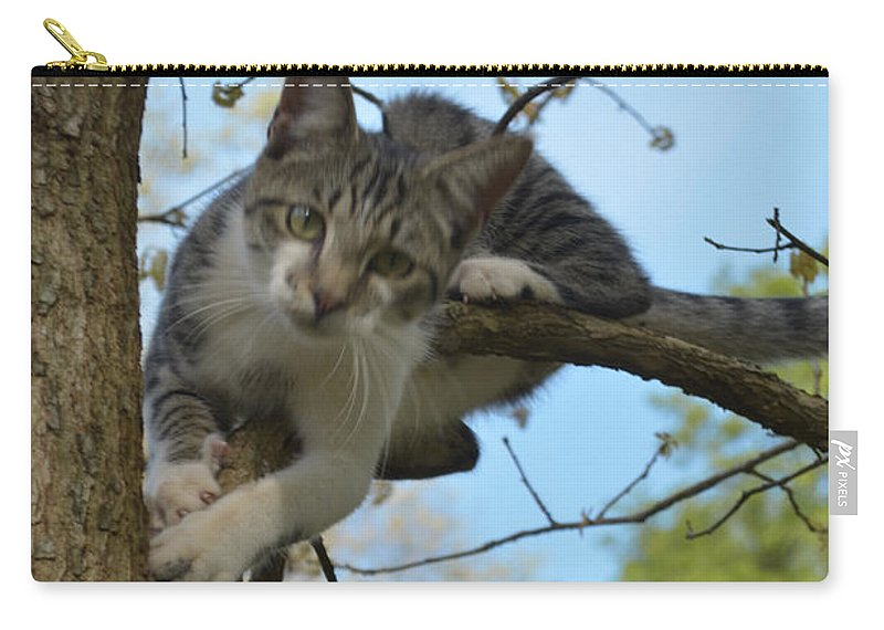 Animal Carry-all Pouch featuring the photograph Hanging Out by Donna Brown