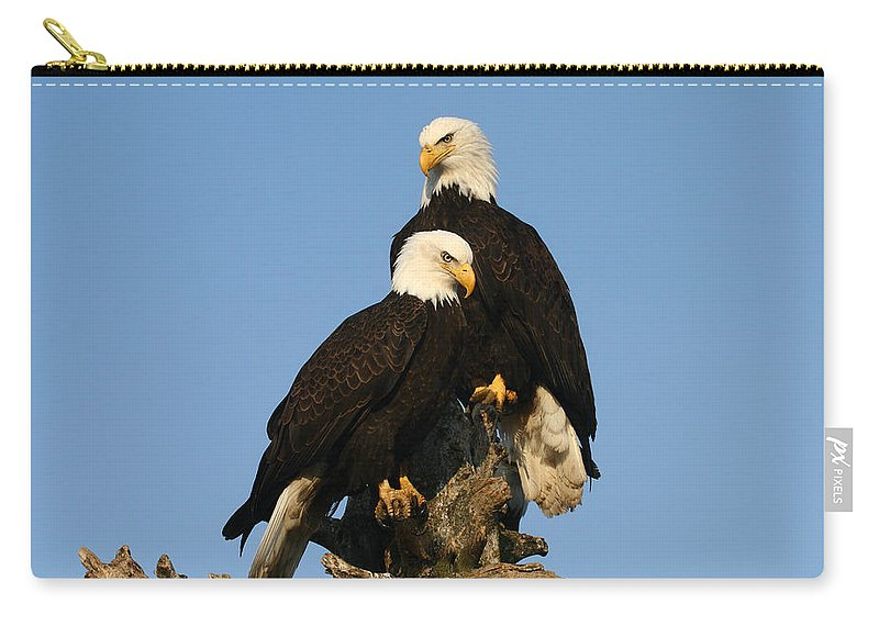 Doug Lloyd Carry-all Pouch featuring the photograph Hanging Out by Doug Lloyd