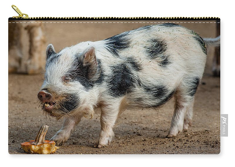 Pig Carry-all Pouch featuring the photograph Happy Pig by Greg Nyquist