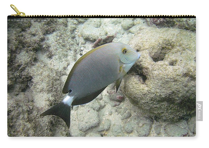 Marine Carry-all Pouch featuring the photograph Hawaiian Tropical Fish P1060093 by Michael Peychich