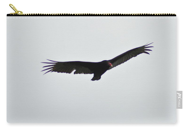 Hawk On The Wind Carry-all Pouch featuring the photograph Hawk On The Wind by Bill Cannon