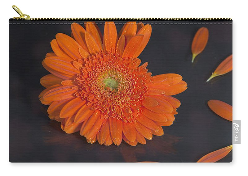 Gerbera Carry-all Pouch featuring the photograph He Loves Me... by Joana Kruse