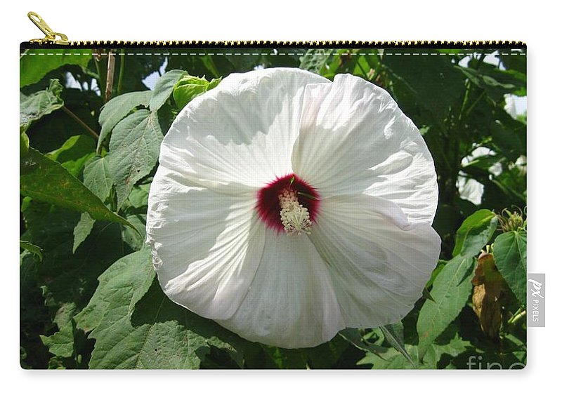 Flower Carry-all Pouch featuring the photograph Hearty Hibiscus by Paula Cork