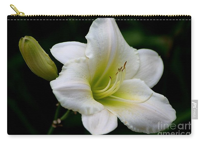 Day Lily Carry-all Pouch featuring the photograph Heaven Sent by Living Color Photography Lorraine Lynch
