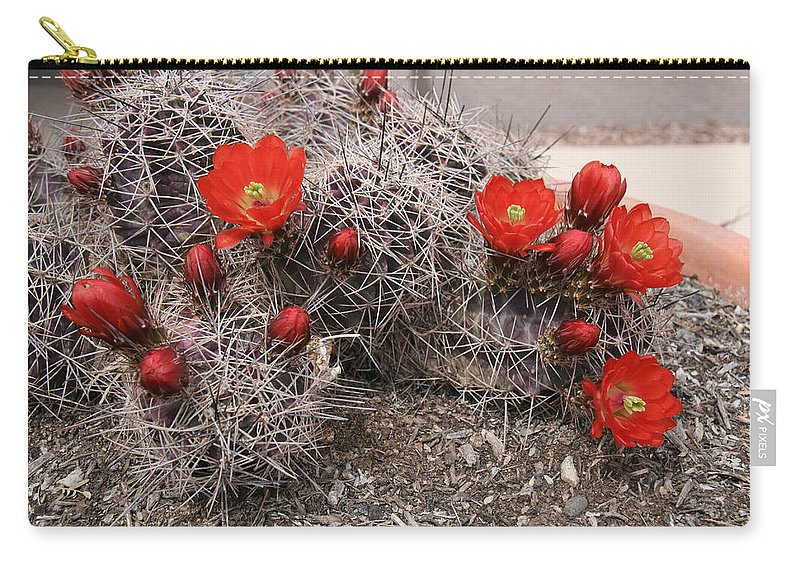 Cactus Carry-all Pouch featuring the photograph Hedgehog Cactus With Red Blossoms by Elizabeth Rose