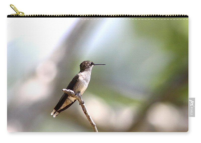 Hummingbird Carry-all Pouch featuring the photograph Hello World by Travis Truelove