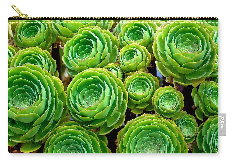Succulents Carry-all Pouch featuring the photograph Hens And Chicks by Eric Tressler