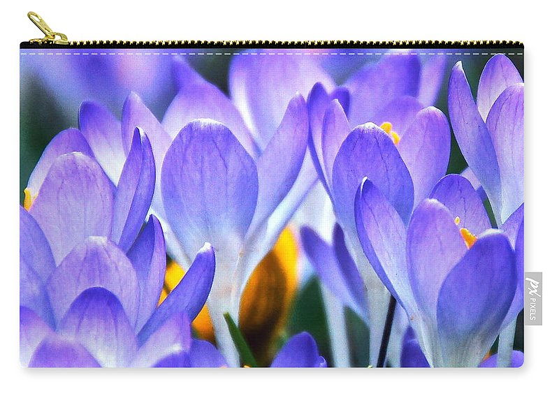 Croci Carry-all Pouch featuring the photograph Here Come The Croci by Byron Varvarigos