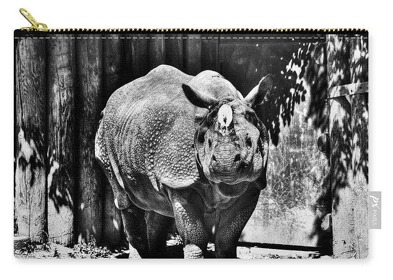 Carry-all Pouch featuring the photograph Heres Lookin At You Kid Indian Rhino by Michael Frank Jr