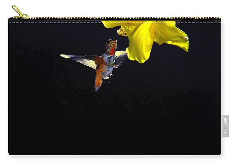 Hummer Carry-all Pouch featuring the photograph Hibiscus Hummer On Black by Lynn Bauer