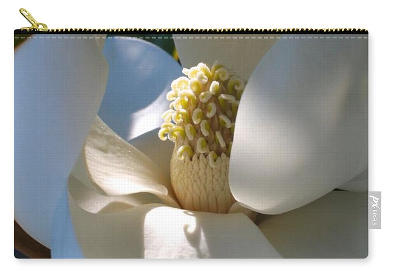 Magnolia Carry-all Pouch featuring the photograph Hidden Magnolia by Carol Groenen