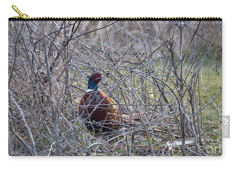Bird Carry-all Pouch featuring the photograph Hiding Pheasant by David Arment