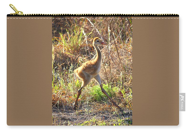 Sandhill Crane Chick Carry-all Pouch featuring the photograph High Stepping Sandhill Chick by Carol Groenen