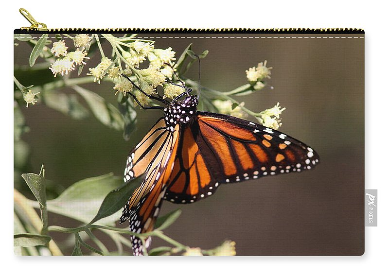 Butterflies Carry-all Pouch featuring the photograph Holding On by Travis Truelove