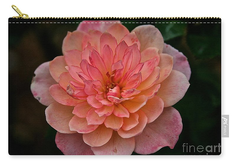 Floral Carry-all Pouch featuring the photograph Honey Bunch by Susan Herber
