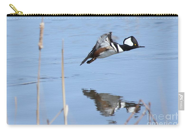 Hodded Carry-all Pouch featuring the photograph Hooded Merganser Flying by Lori Tordsen