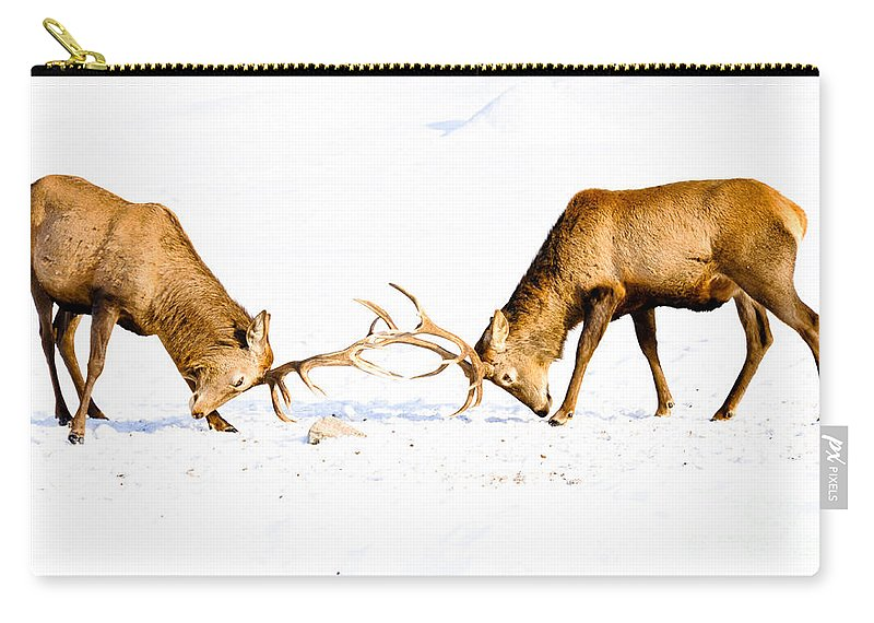Wapiti Carry-all Pouch featuring the photograph Horns A Plenty by Cheryl Baxter