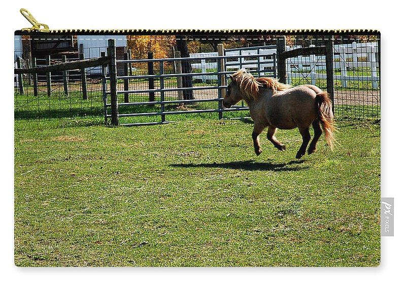 Usa Carry-all Pouch featuring the photograph Horse Jump by LeeAnn McLaneGoetz McLaneGoetzStudioLLCcom