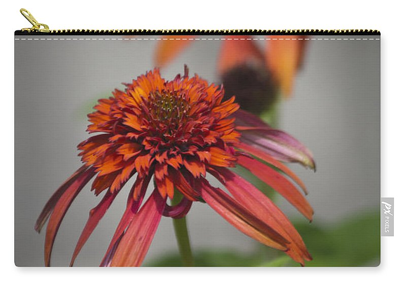 Coneflower Carry-all Pouch featuring the photograph Hot Papaya Coneflowers by Teresa Mucha