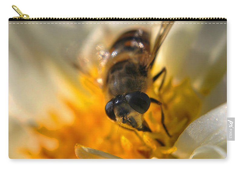 Yhun Suarez Carry-all Pouch featuring the photograph Hoverfly On White Flower by Yhun Suarez