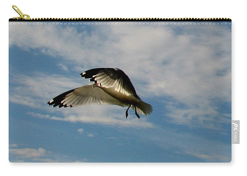 Ga Carry-all Pouch featuring the photograph Hovering by Ericamaxine Price