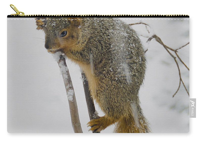 Usa Carry-all Pouch featuring the photograph How I Hate Snow by LeeAnn McLaneGoetz McLaneGoetzStudioLLCcom