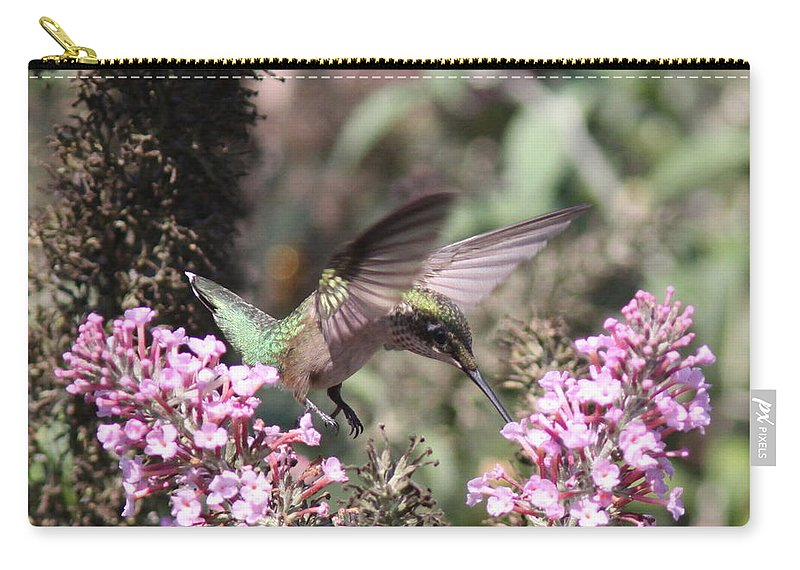 Hummingbird Carry-all Pouch featuring the photograph Hummingbird - Ruby-throated Hummingbird - Chopper by Travis Truelove