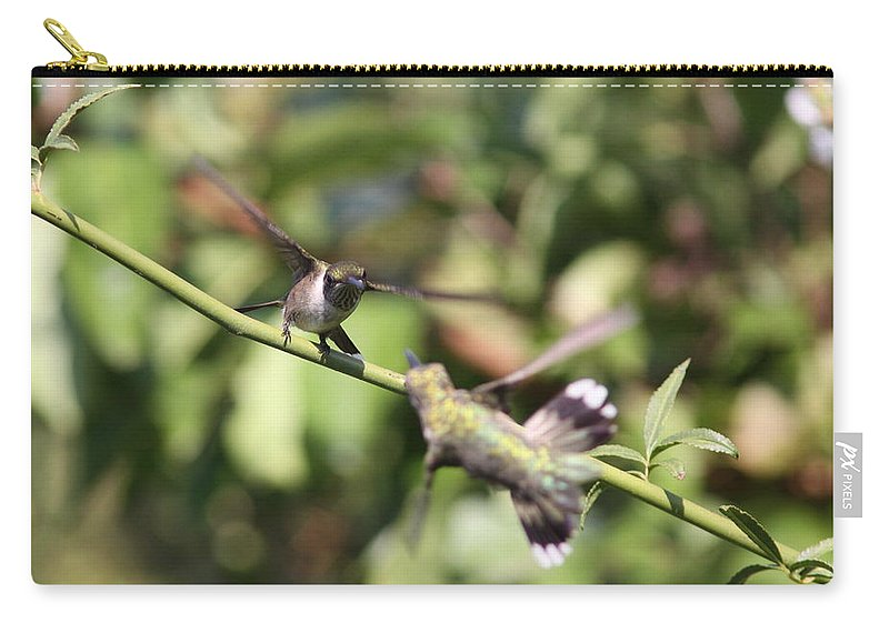 Hummingbird Carry-all Pouch featuring the photograph Hummingbird - You Have Done It Now by Travis Truelove