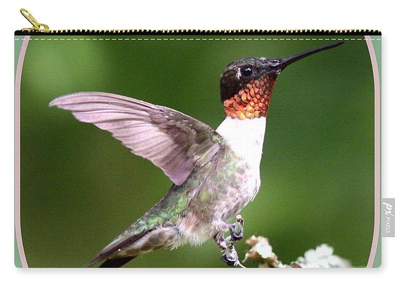 Hummingbird Carry-all Pouch featuring the photograph Hummingbird Photo - Light Green by Travis Truelove