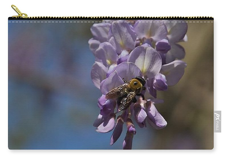 Baily School Carry-all Pouch featuring the photograph Hunger by Joseph Yarbrough
